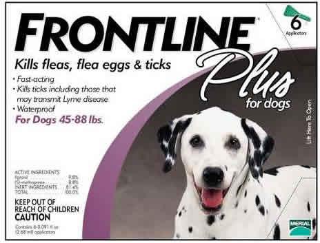 frontline-01
